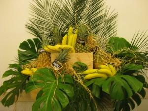 Bananas y Piñas Flli Orsero